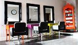 Hays Salon gallery image 3